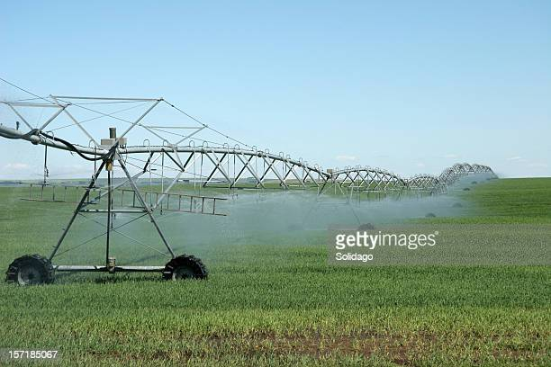 irrigation system watering the crops - stubble stock pictures, royalty-free photos & images