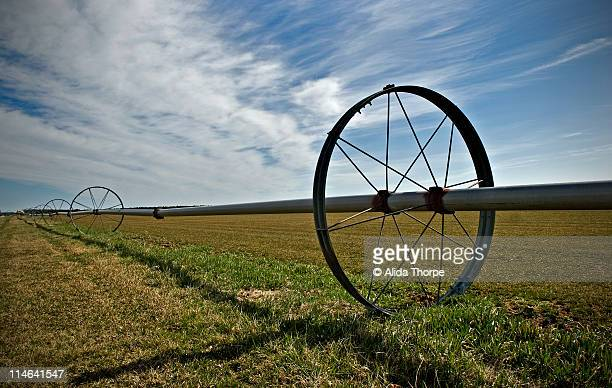 Irrigation wheel