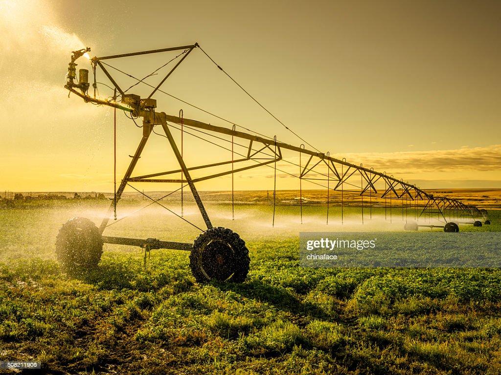 Irrigador máquina de Palouse : Foto de stock