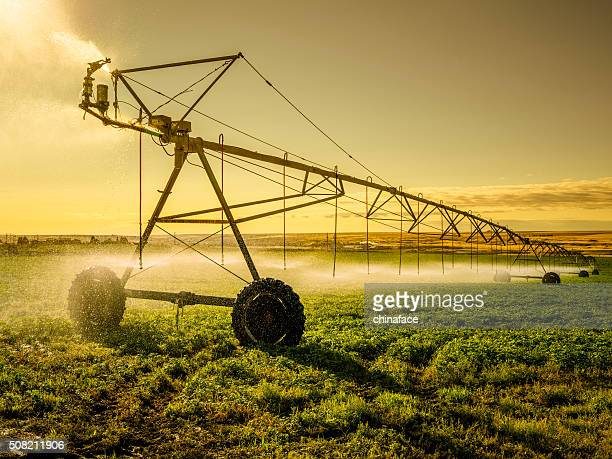 irrigator machine at palouse - sprinkler system stock pictures, royalty-free photos & images