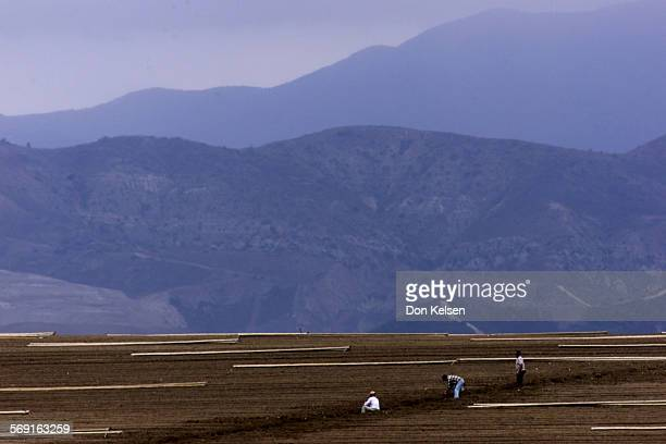Irvine Agriculture field is readied for next crop and irrigation near the San Diego Freeway and Laguna Canyon Road