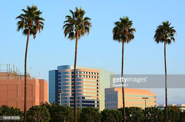 Irvine highrise buildings and palm trees