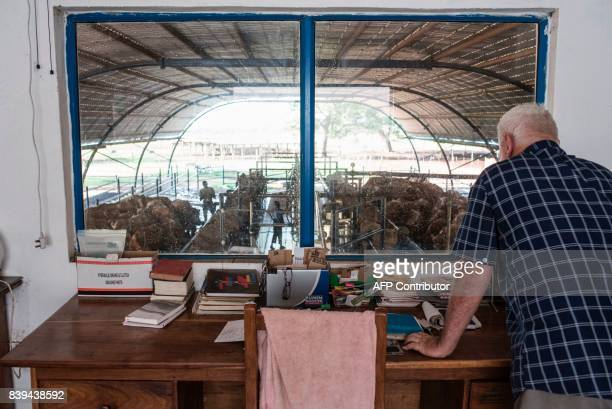 Irvine Reid manager of Rosedale Dairy Farm looks across the dairy from his office on on July 11 2017 Farming in Nigeria is not for the fainthearted...