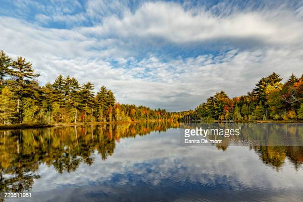 irwin lake, hiawatha national forest, upper peninsula of michigan, usa - hiawatha national forest stock pictures, royalty-free photos & images