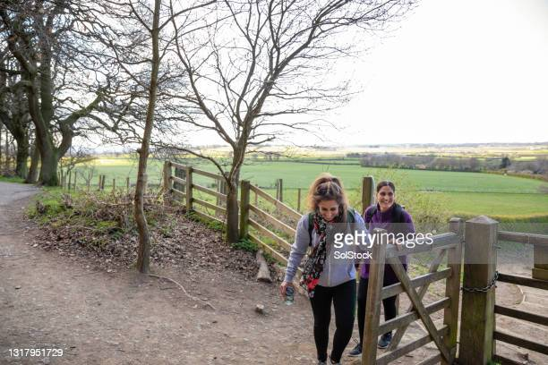 is this the way to the viewpoint? - moving after stock pictures, royalty-free photos & images