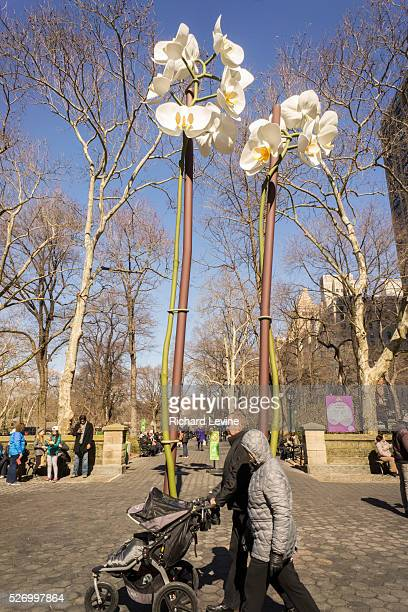 Isa Genzken's 'Two Orchids' are a harbinger of spring during its exhibit in the Doris C Freedman Plaza of Central Park in New York on Sunday March 6...