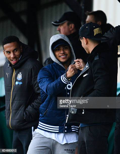 Isaac Hayden DeAndre Yedlin and Ayoze Perez of Newcastle watch the Premier League 2 Match between Newcastle United and West Bromwich Albion at...