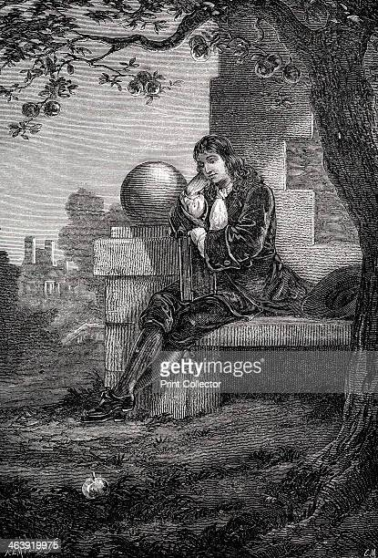 Isaac Newton English scientist and mathematician 17th century Newton in the orchard at Woolsthorpe Manor Lincolnshire where an apple is supposed to...