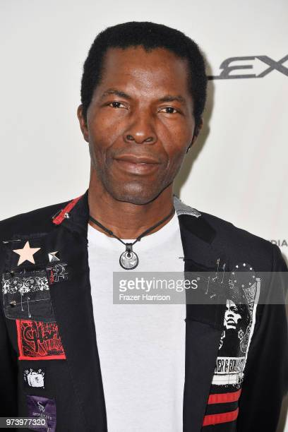 Isaach de Bankole attends the Women In Film 2018 Crystal Lucy Awards presented by Max Mara Lancôme and Lexus at The Beverly Hilton Hotel on June 13...