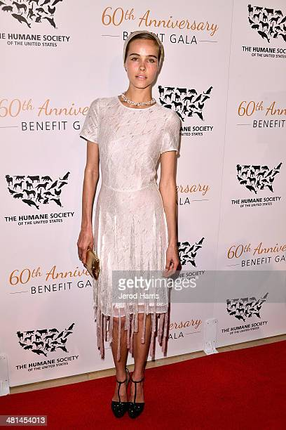 Isabel Lucas attends the Humane Society of the United States 60th Anniversary Benefit Gala at The Beverly Hilton Hotel on March 29 2014 in Beverly...