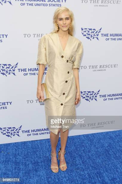 Isabel Lucas attends The Humane Society of The United States' to The Rescue Los Angeles Gala held at Paramount Studios on April 21 2018 in Los...