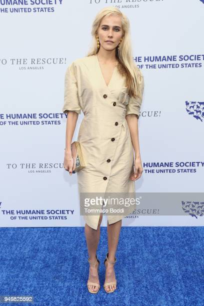 Isabel Lucas attends The Humane Society Of The United States' To The Rescue Los Angeles Gala at Paramount Studios on April 21 2018 in Los Angeles...