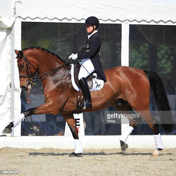 isabell werth at horses & dreams 2014 - dressage stock pictures, royalty-free photos & images