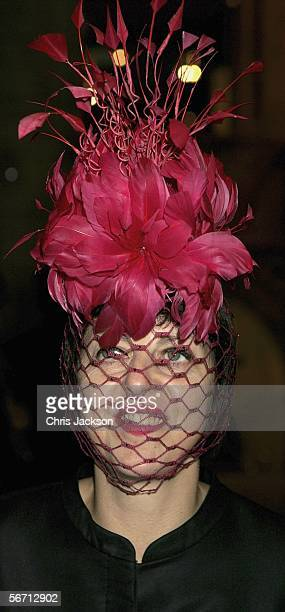 Isabella Blow attends the private view for Anna Piaggi's new exhibition Fashionology at the Victoria Albert Museum on January 31 2006 in London...