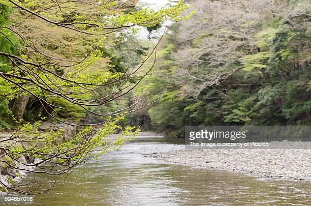 ise jingu shrine water stream - 日本の神社 ストックフォトと画像