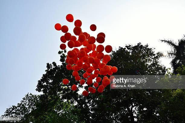 Isha Vidhya balloons take flight at the Make A Life Golf Jaunt fundraiser held by Isha Vidhya the rural education arm of Sadhguru Jaggi Vasudev's...
