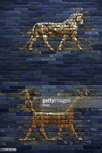 Ishtar Gate The eight gate of the inner wall of Babylon Built in 575 BC by order to Nebuchadnezzar II Reconstructed in 1930 Detail Pergamon Museum...