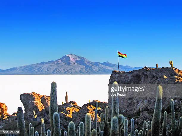 isla del pescado - bandera boliviana fotografías e imágenes de stock