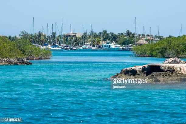 isla mujeres island in mayan riviera, mexico - isla mujeres stock pictures, royalty-free photos & images
