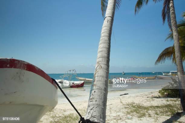 isla mujeres mexico - mujeres fotos stockfoto's en -beelden