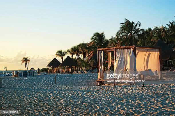 isla mujeres - piranha photos et images de collection