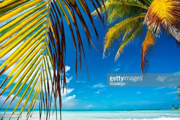 Isla Mujeres Yucatan Mexico America