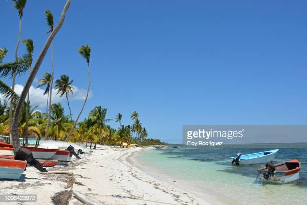 isla saona - mano juan - アンティル諸島 ストックフォトと画像