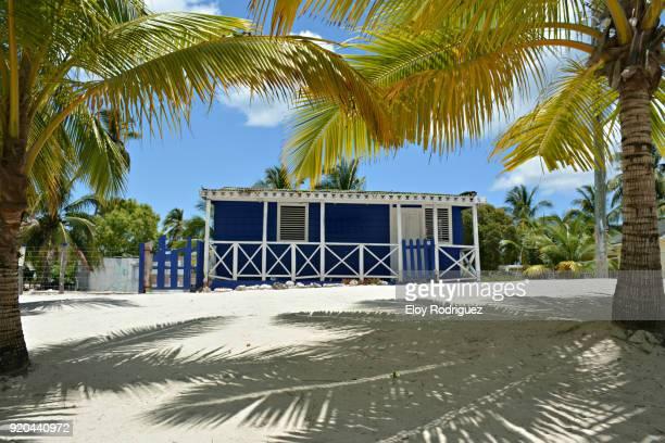 Isla Saona - Mano Juan - Playas