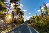 Island Country Road into Sunset New Caledonia