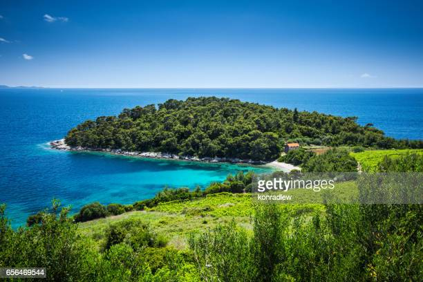island, crystal clear adriatic sea and blue sky with white clouds - hvar stock photos and pictures