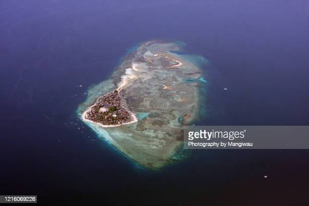 island ecosystem, over population - kalimantan stock pictures, royalty-free photos & images