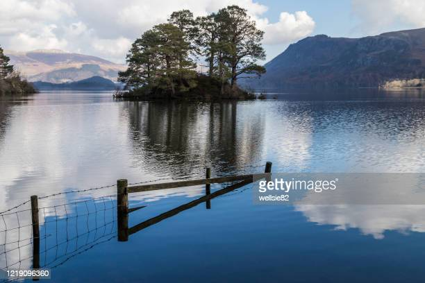 island in derwent water - reservoir stock pictures, royalty-free photos & images