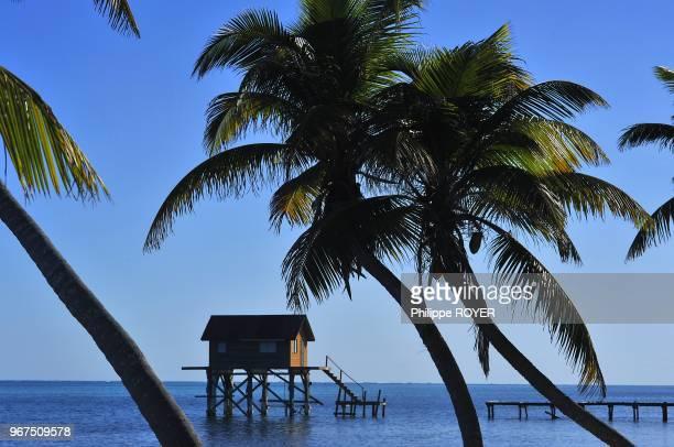Island of Ambergris Caye Belize