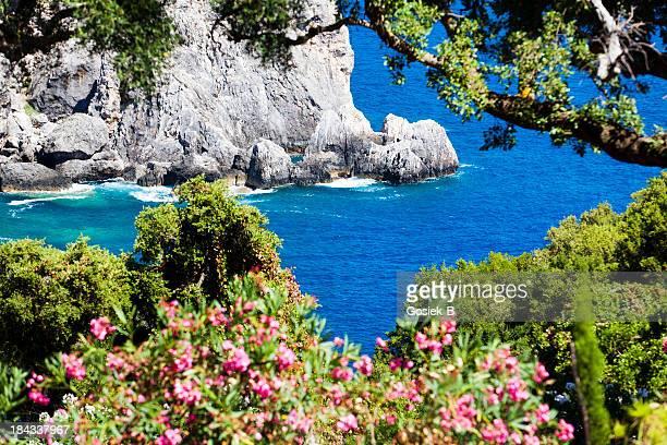 island of corfu,paleokastritsa - corfu stock pictures, royalty-free photos & images