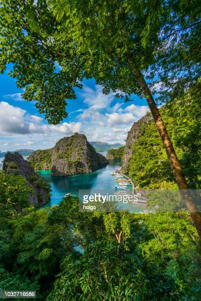island of coron with a view of kayangan lake in palawan, philippines - palawan stock pictures, royalty-free photos & images
