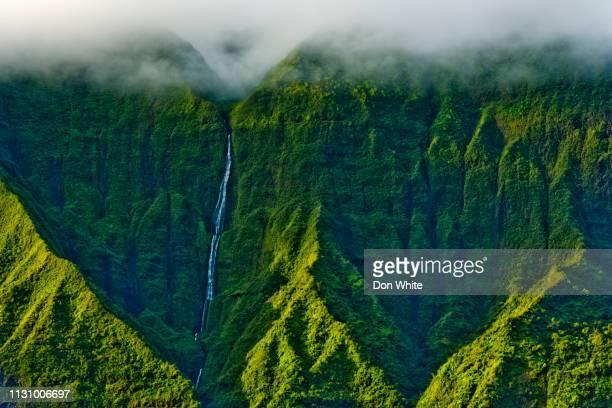 ハワイのカウアイ島 - 生い茂る ストックフォトと画像