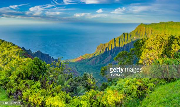 island of kauai in hawaii - water fall hawaii stock pictures, royalty-free photos & images