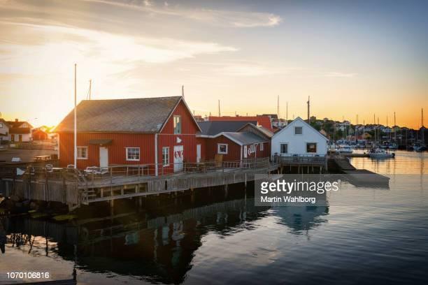 insel der knippla in bohuslan - schweden stock-fotos und bilder