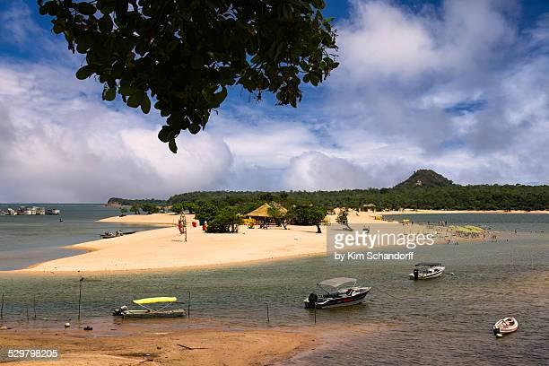 island of love - estado del amazonas brasil fotografías e imágenes de stock