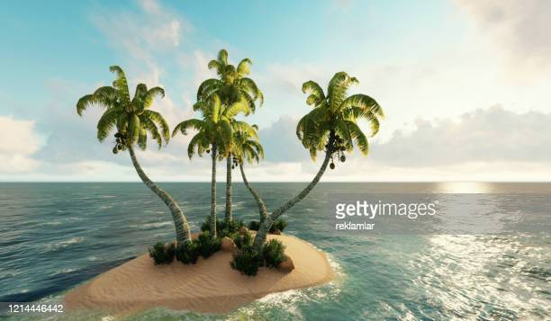 island, small island in ocean. 3d render - dominica stock pictures, royalty-free photos & images