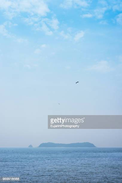 islands floating on the sea and birds flying on blue sky - からっぽ ストックフォトと画像