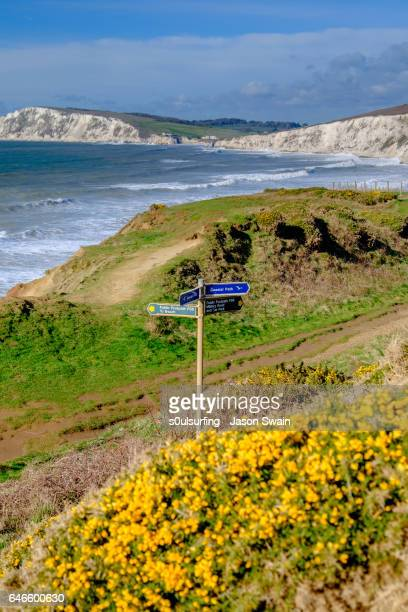 isle of wight coastal path - compton bay isle of wight stock pictures, royalty-free photos & images