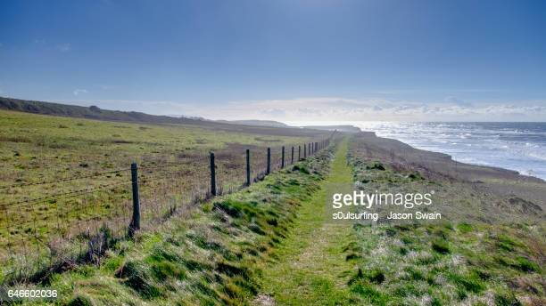 isle of wight coastal path - isle of wight stock pictures, royalty-free photos & images