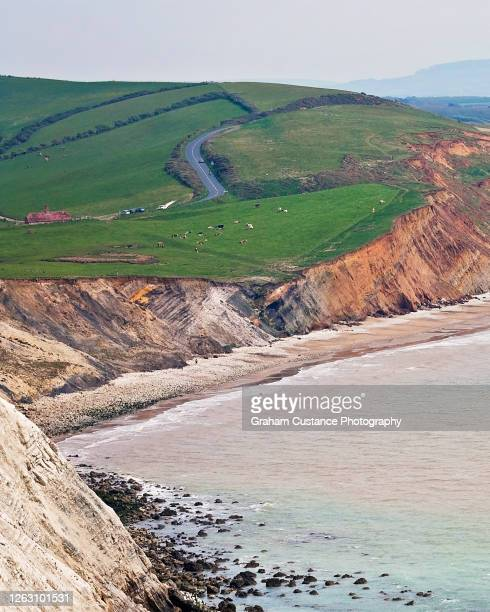 isle of wight - compton bay isle of wight stock pictures, royalty-free photos & images