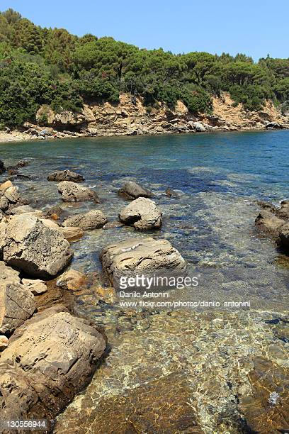 isola d'elba: spiaggia di galenzana - isola delba foto e immagini stock