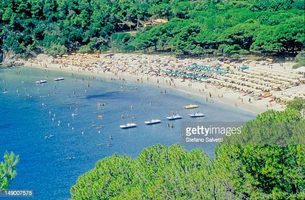 isola d'elba, veduta della spiaggia di cavoli - isola delba foto e immagini stock
