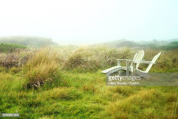 Isolated Adirondack Chairs On Grassy Field Against Misty Background