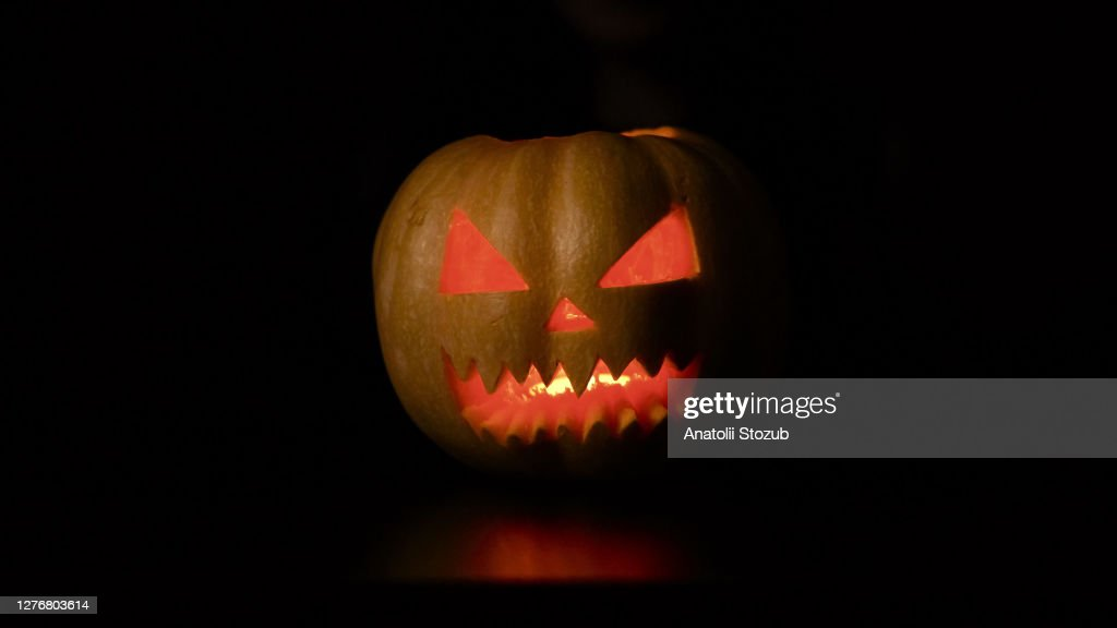 Isolated black background. The woman puts the pumpkin in the for : Stock Photo