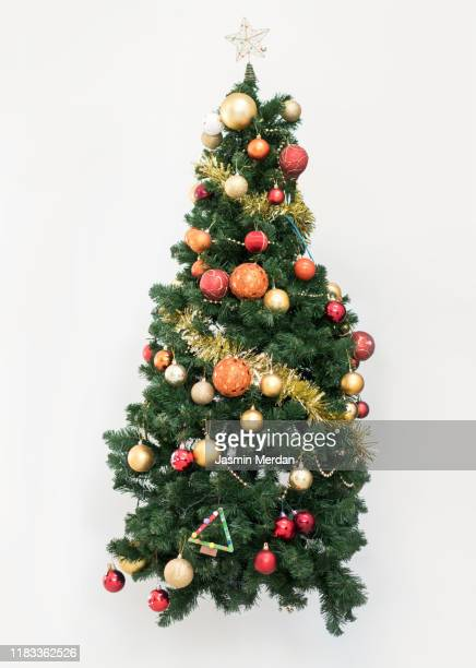 isolated christmas tree - fir tree stock pictures, royalty-free photos & images