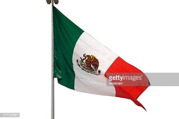 isolated flag of mexico - mexican flag stock pictures, royalty-free photos & images